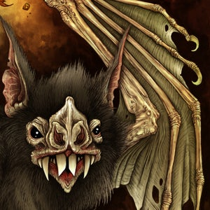 Image of Conjoined Vampire Bat