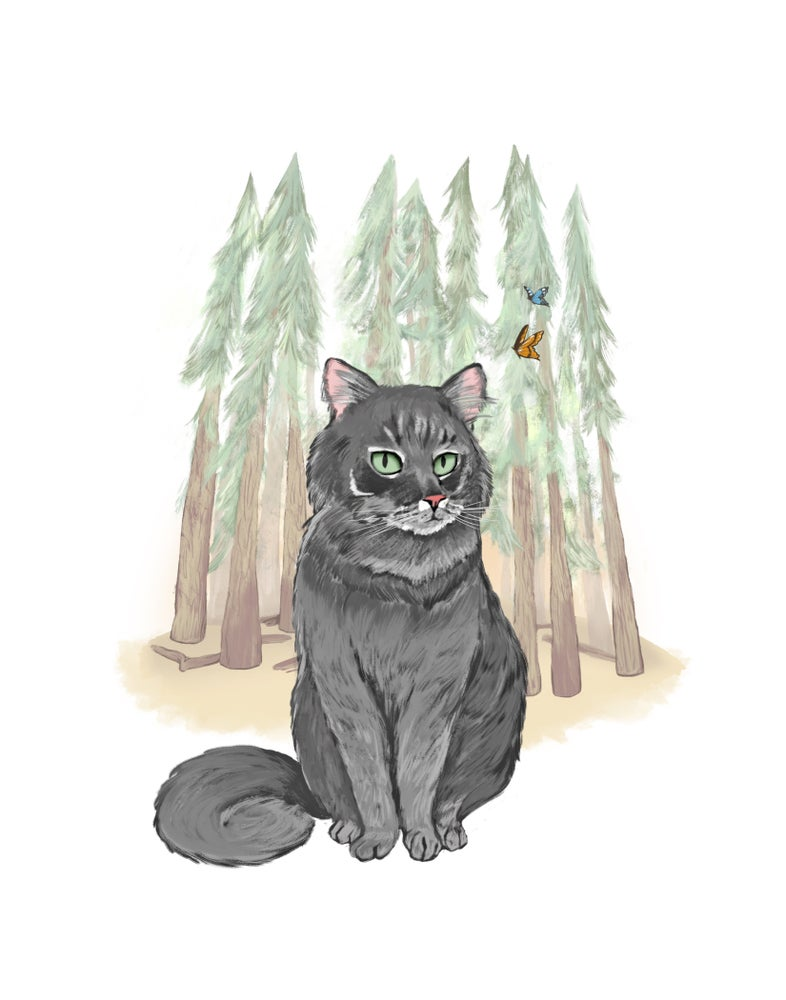 Image of Wonder Cat of Yosemite Print