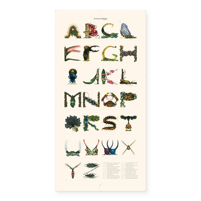 Image of The Arthropod Alphabet - [Giclée Print]