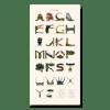 The Arthropod Alphabet - [Giclée Print]