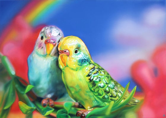 Image of Budgie Love
