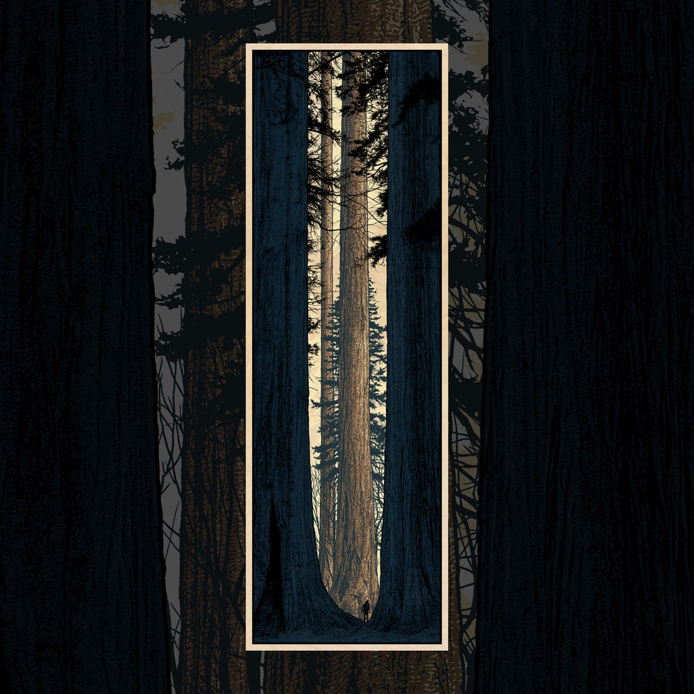 "Image of ""Avenue of the Giants"" - WOOD PANEL"