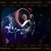 Image of THE FALLEN LEAVES Maximum Minimum LP