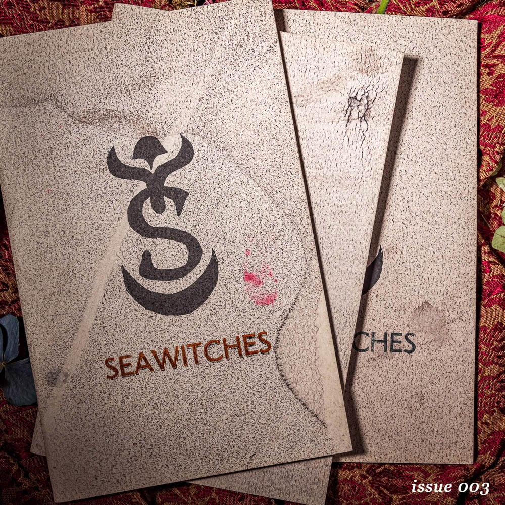 Image of Seawitches Zine