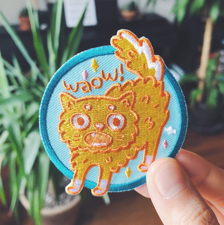 Image of WAOW PATCH