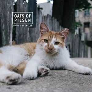 Image of Cats of Pilsen 2020 Wall Calendar