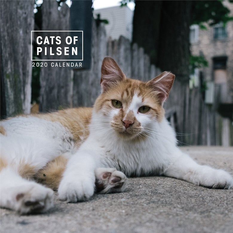 Image of Cats of Pilsen 2020 Wall Calendar