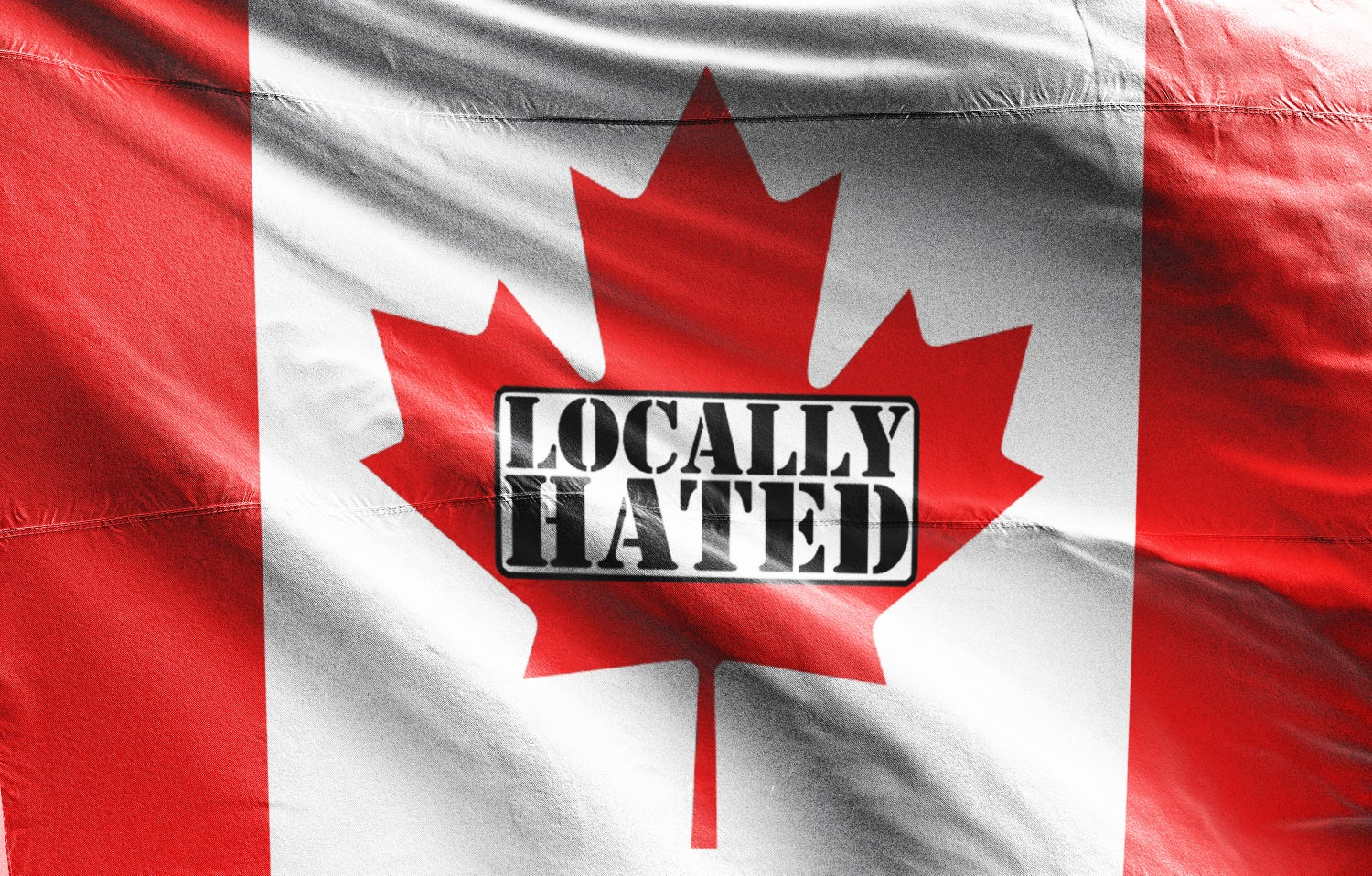 Image of 3'x5' Locally hated flag