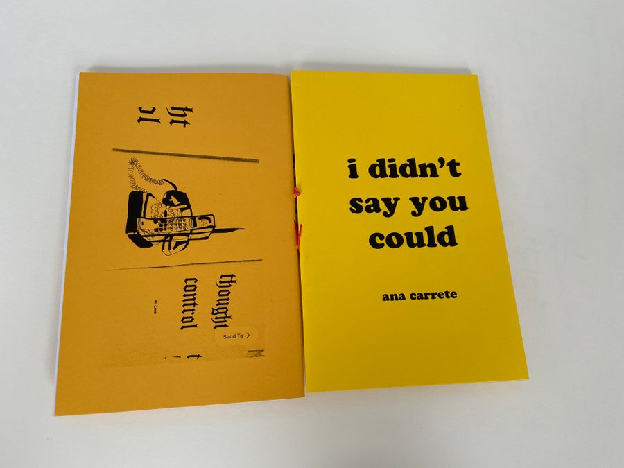 Image of i didn't say u could (2nd print)