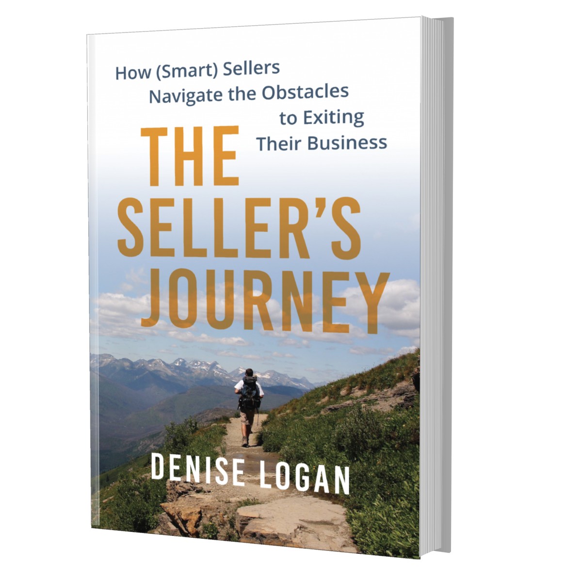 Image of The Seller's Journey