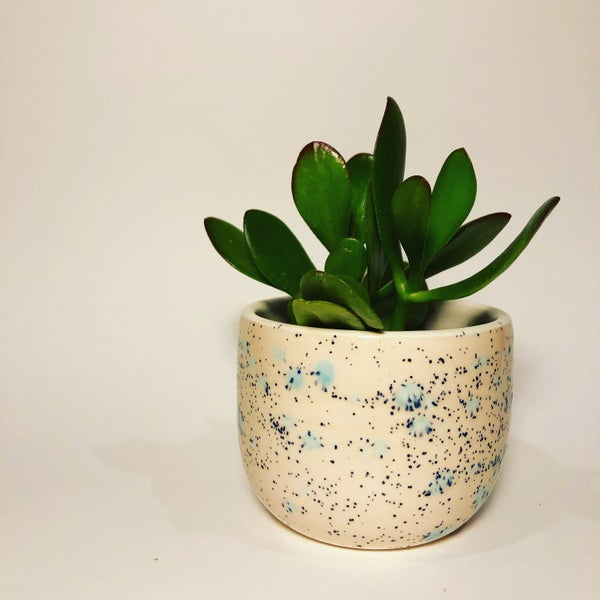Image of Birthday Wish Planter