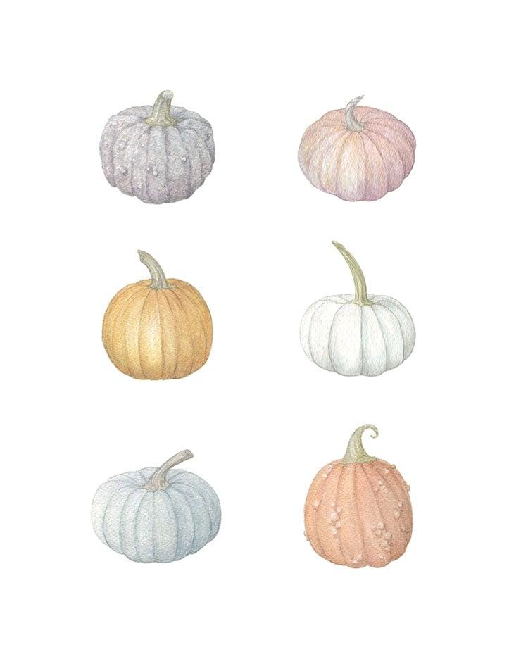 Image of Six Pumpkins 8x10 print