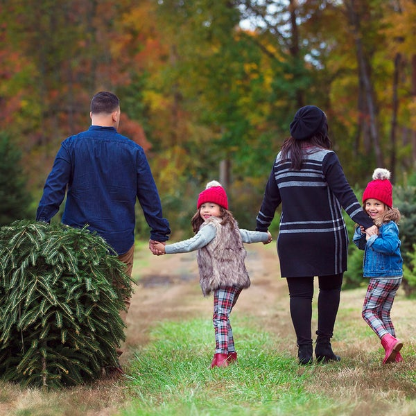 Image of Holiday Tree Farm Sessions 2019