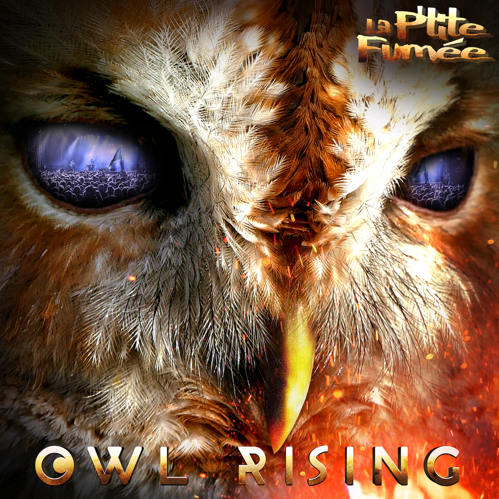 Image of OWL RISING - Double Vinyls Album