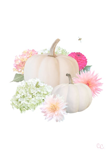 Image of Pretty Pumpkins