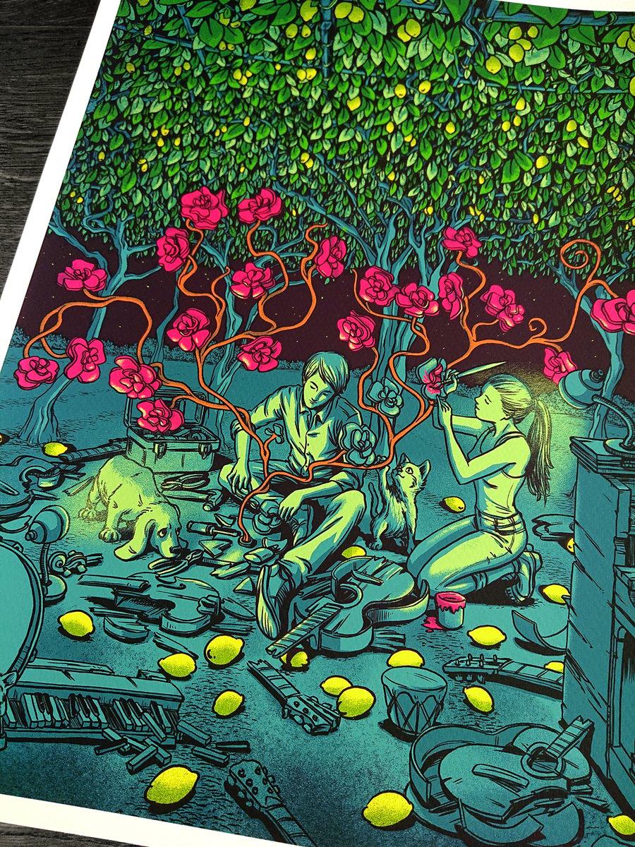 Image of The Lemon Grove At Night