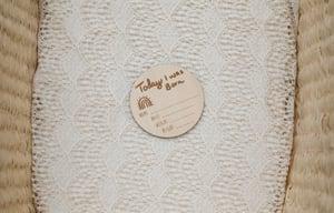 Image of Little Willow Rabbit Milestone Discs