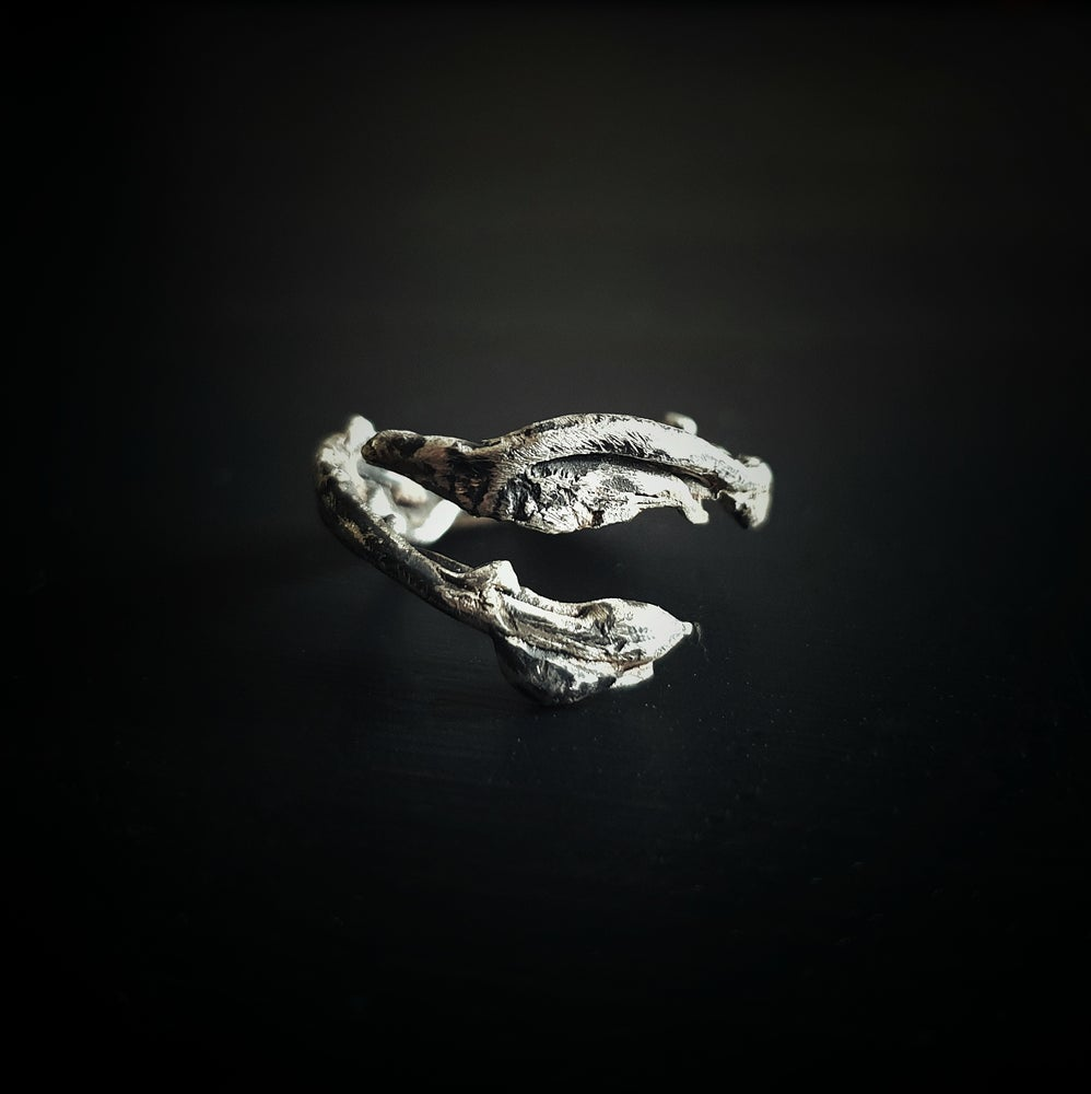"Image of ""RADIX MALORUM I"" adjustable sterling silver ring"