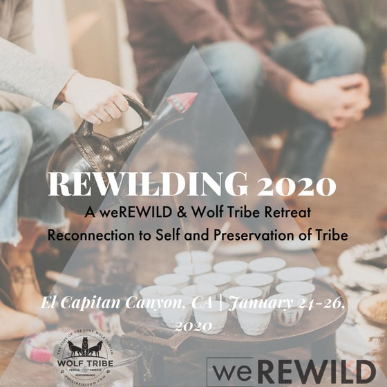 Image of Rewilding 2020 Retreat Coy Wolf (Cabin for 2) DEPOSIT