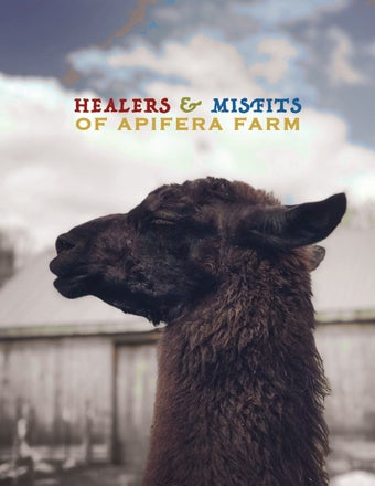 Image of Misfits & Healers a photo book