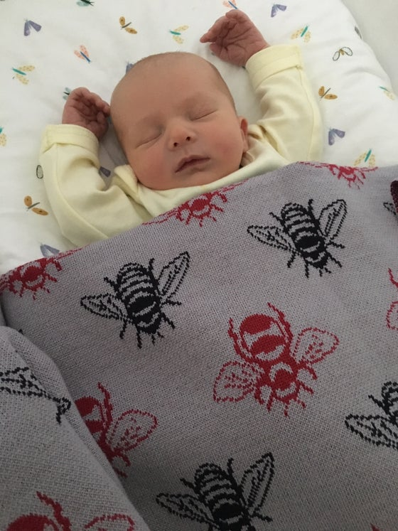 Image of NZ Honeybee Cot Blanket - 100% Merino
