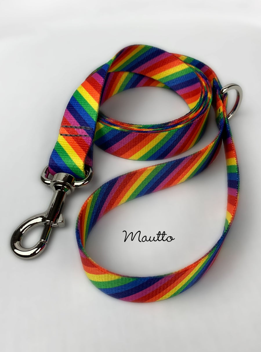 Image of Rainbow Dog Leash for Medium to Large Size Animal/Pet - LGBTQ Pride - 4 Lengths, Short to Extra Long