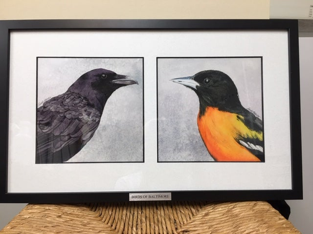 Image of BIRDS OF BALTIMORE