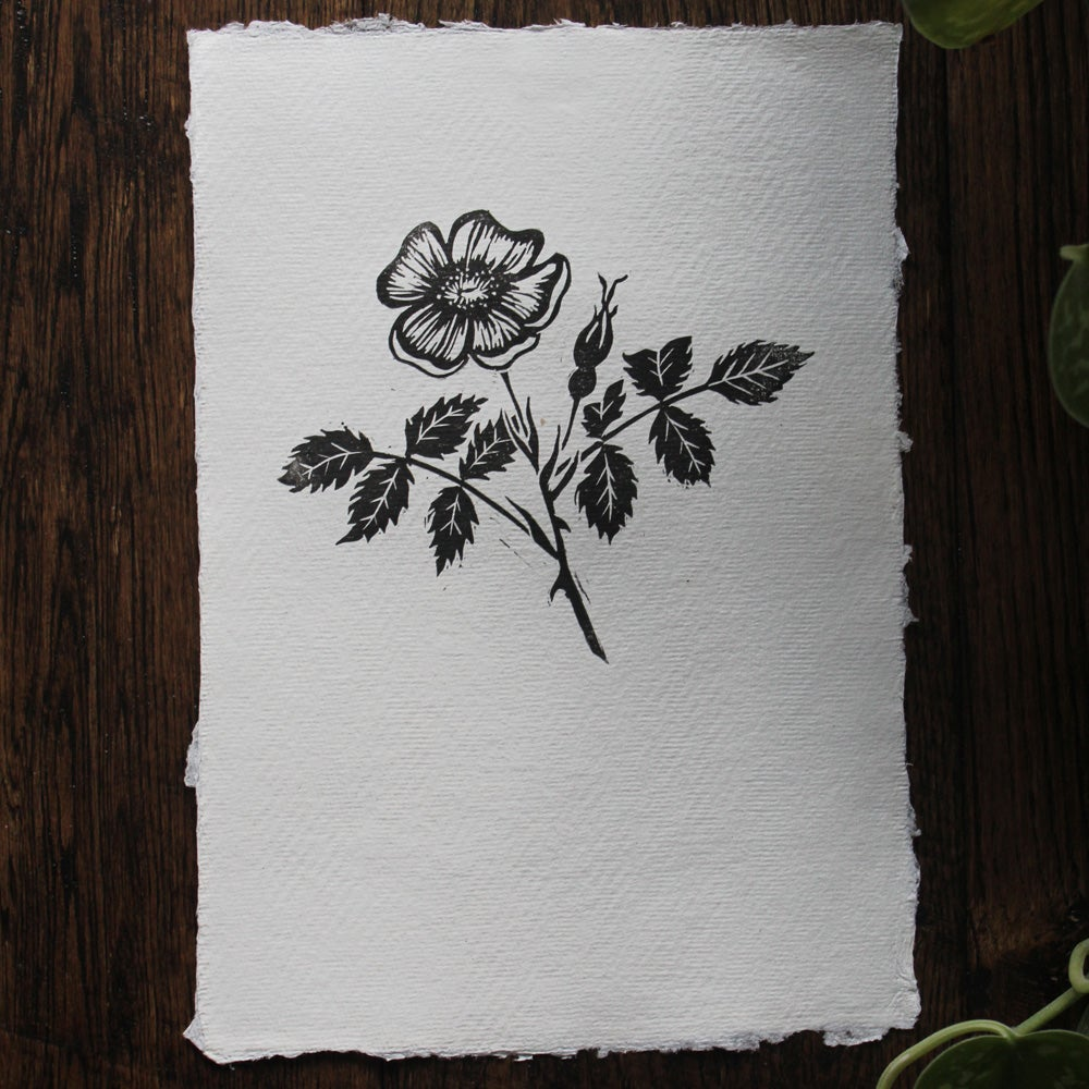 Image of Briar Rose lino print