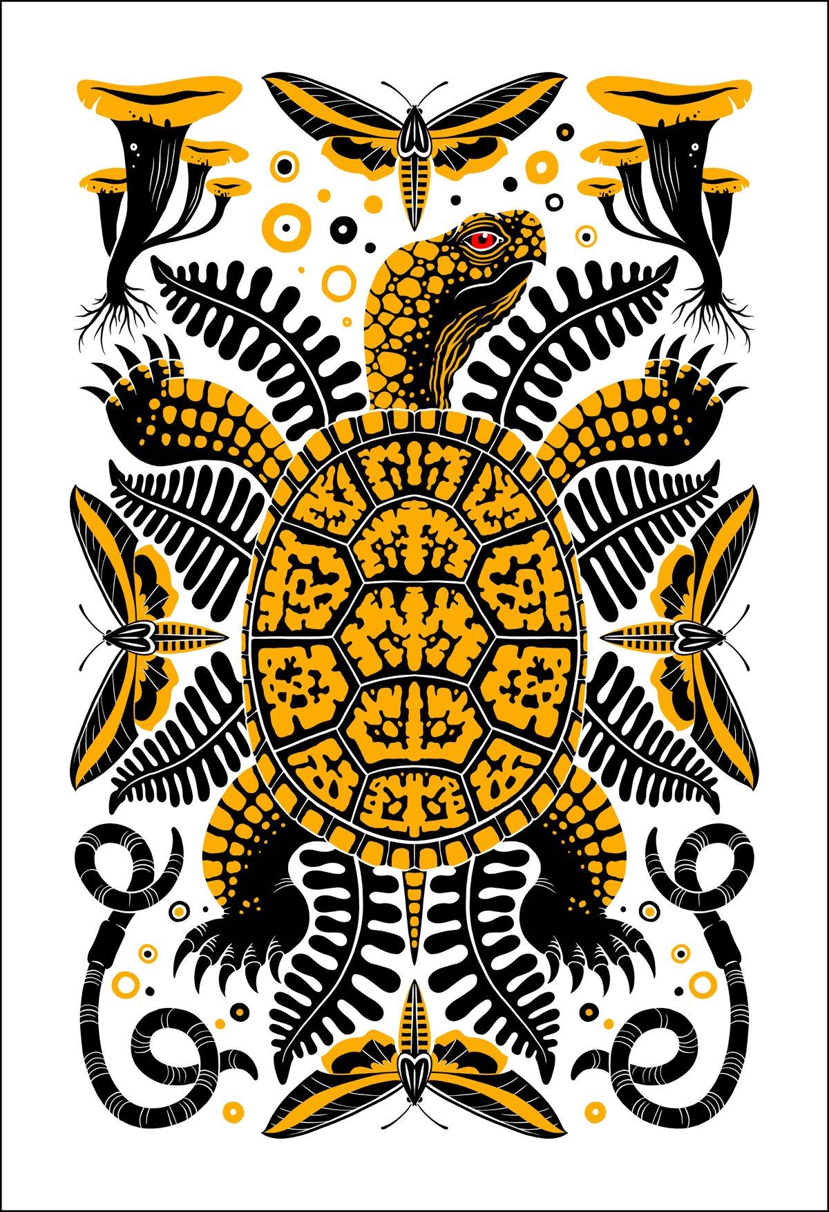 Image of Box Turtle Print