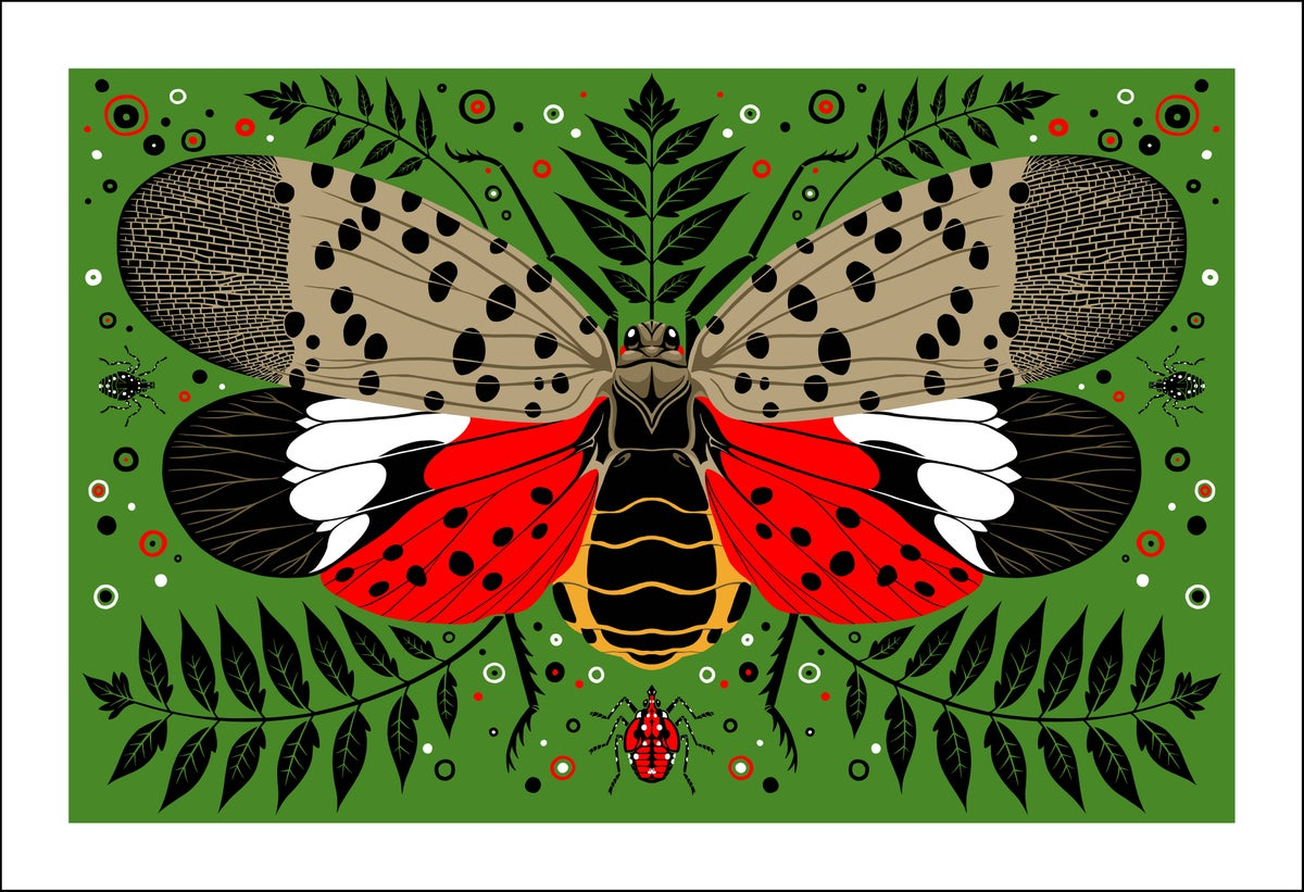 Image of Spotted Lanternfly Print