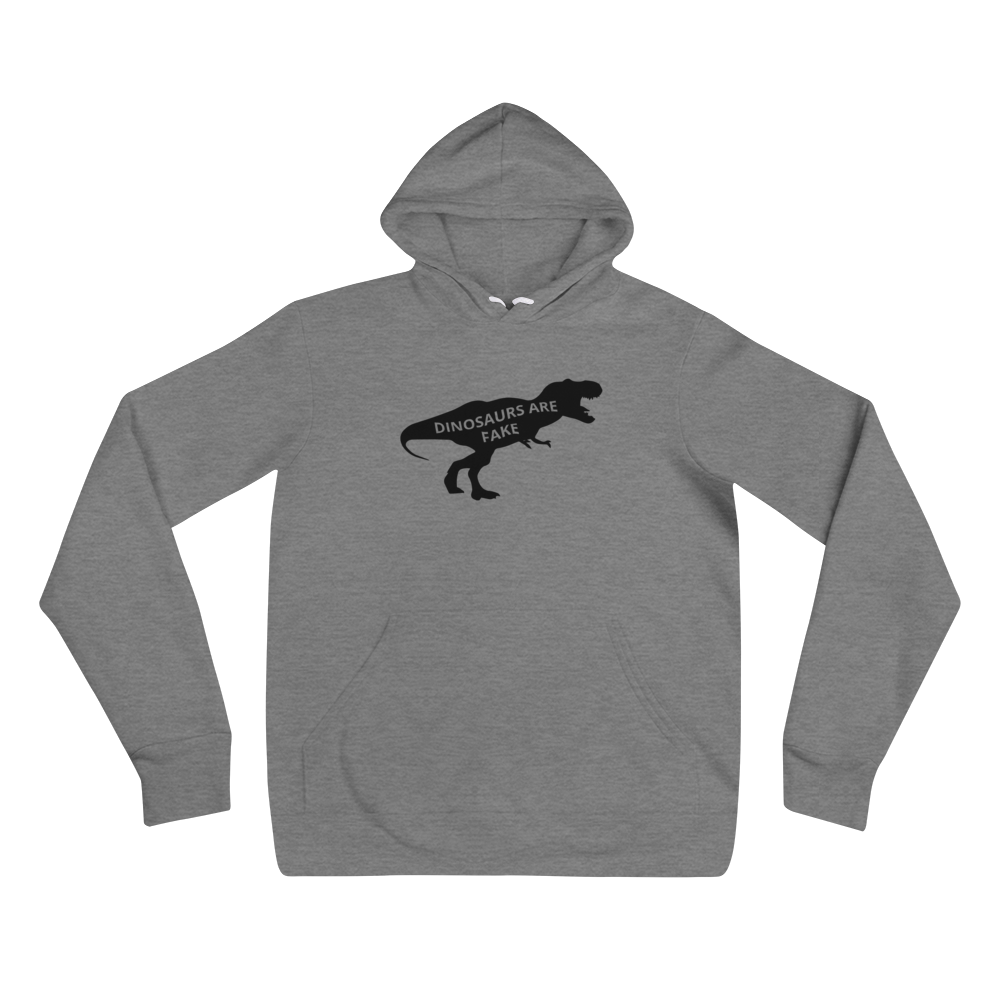 Image of Dinosaurs Are Fake Comfy Hoodie