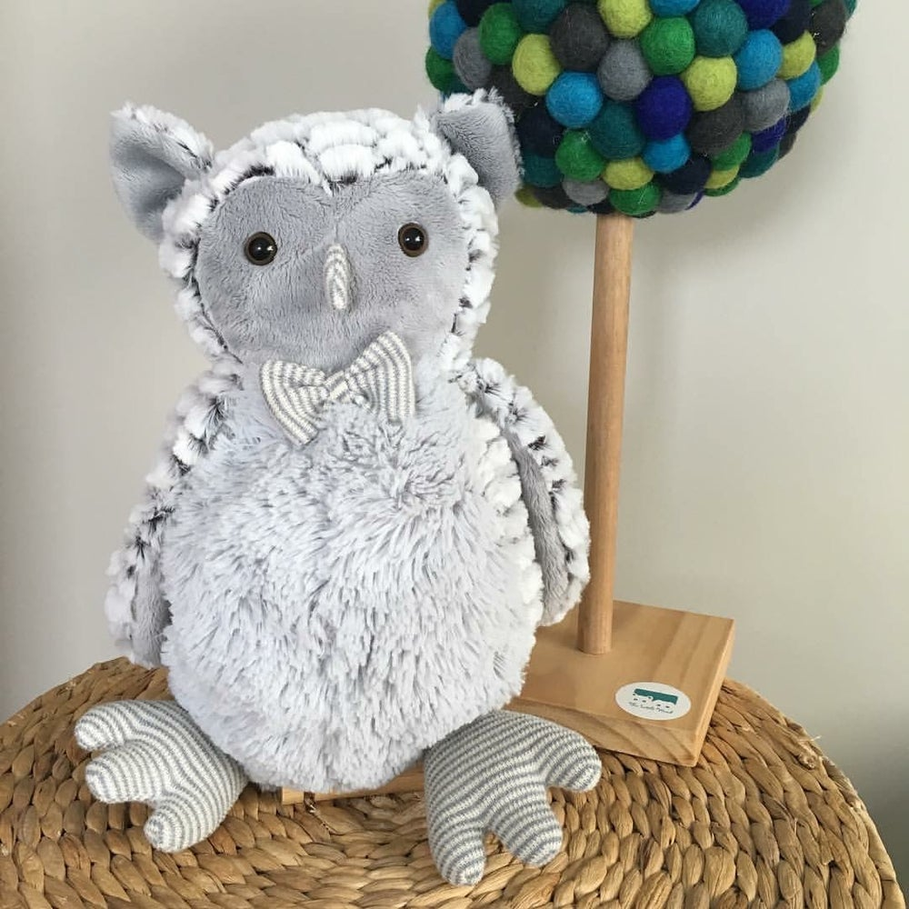 Image of Ollie the Owl