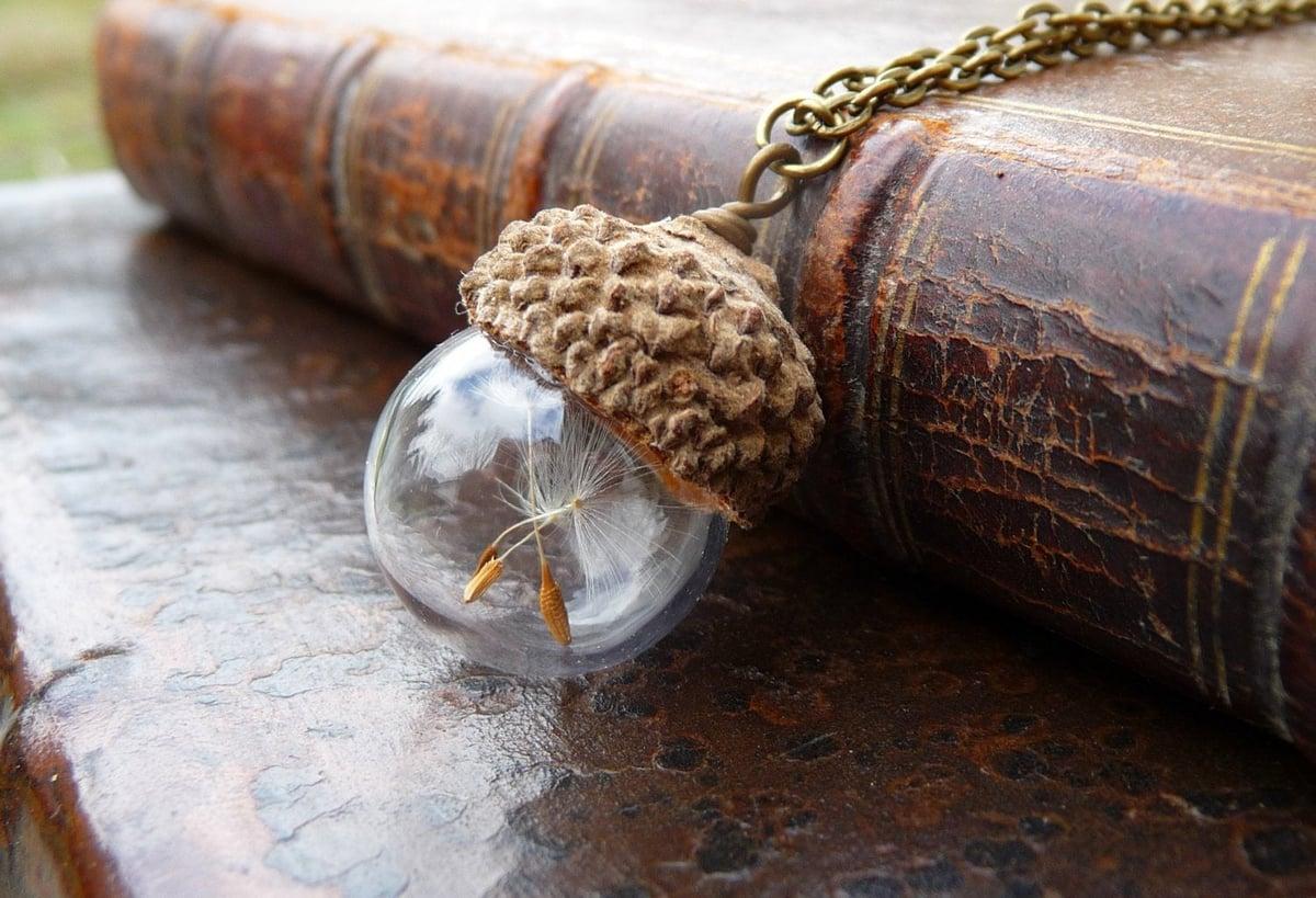 Image of Acorn Dandelion Seed Necklace