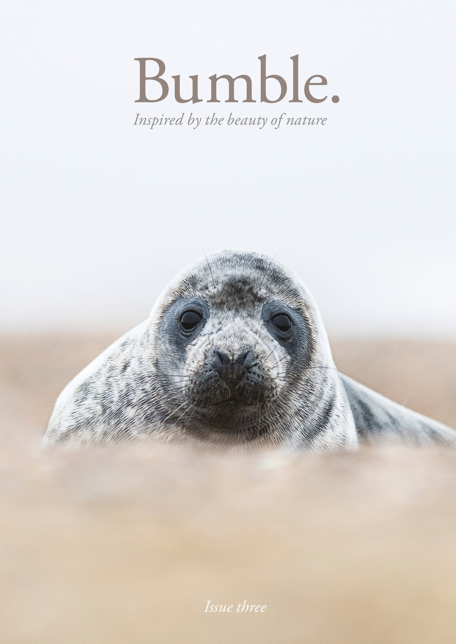 Image of Bumble Issue Three