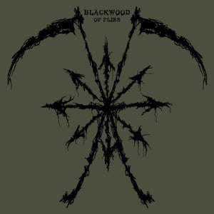 Image of Blackwood - Of Flies - Black Etched LP