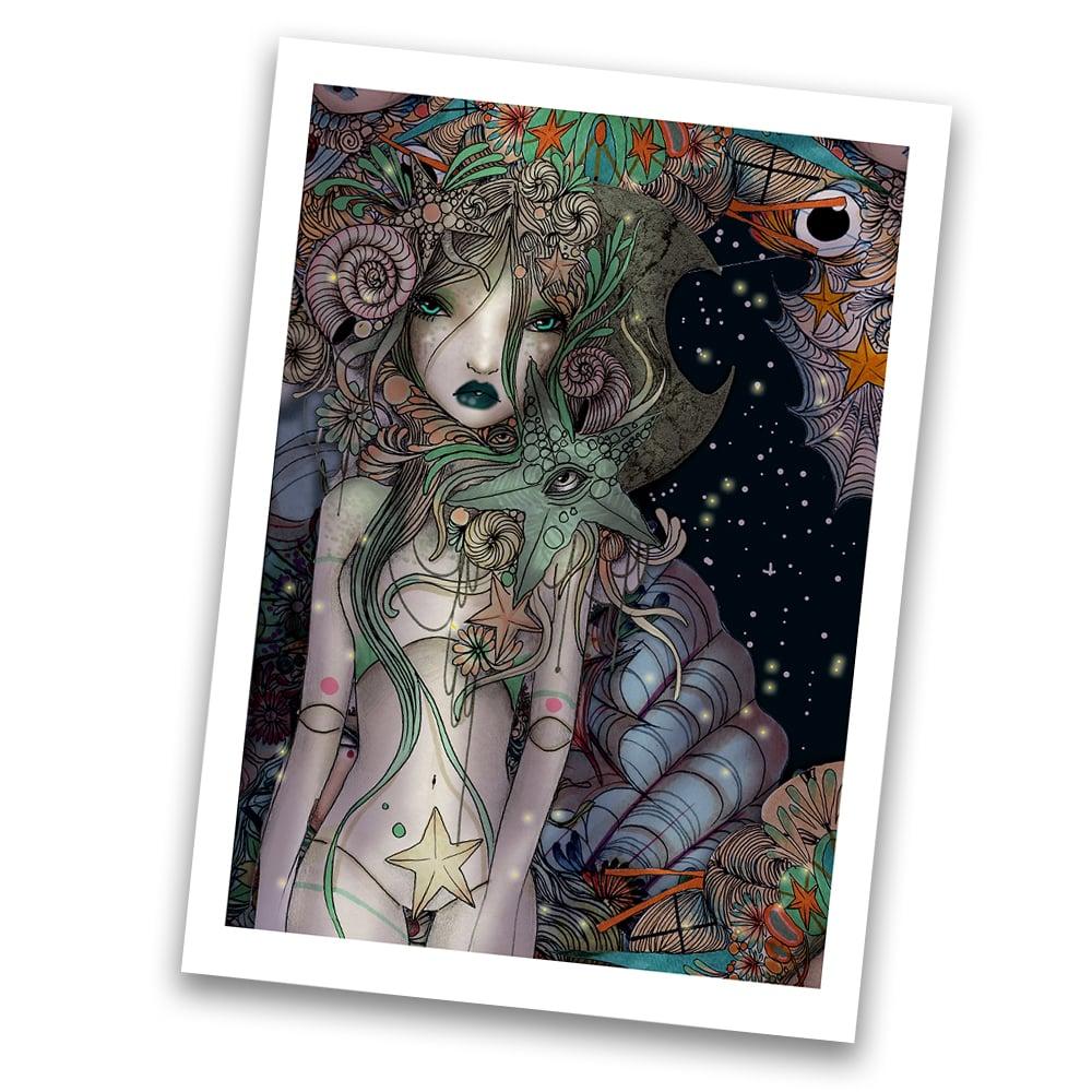 Image of Coralia A4 print