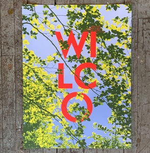 Image of Wilco Irving TX 2019 poster