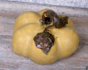Image of Handmade Ceramic Pumpkin. Fall Thanksgiving Decor. Pottery Pumpkin Figurine