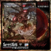Image of WORMHOLE - The Weakest Among Us - Red/Black Vinyl