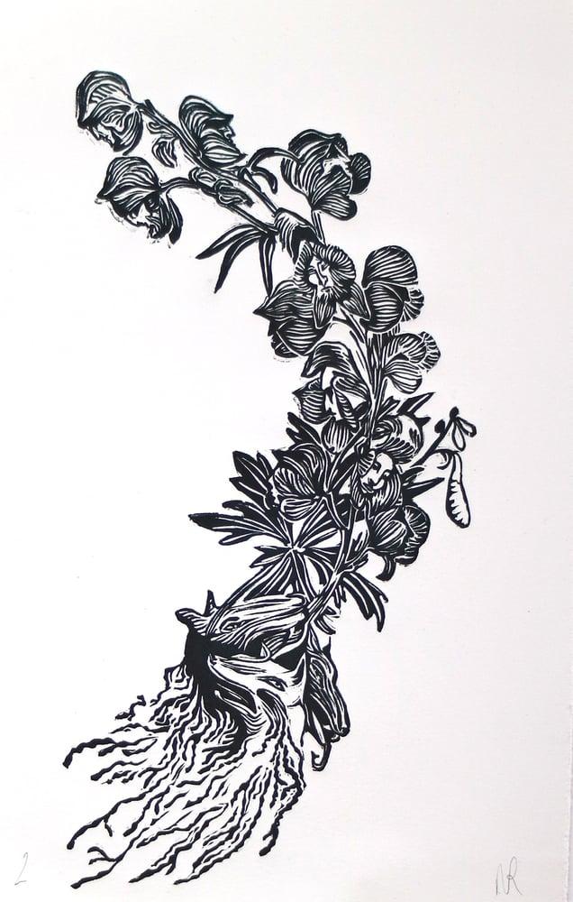 Image of Aconite – Linocut Print