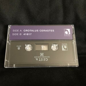 Image of Geist & The Sacred Ensemble: Dig In Sessions III / cassette + download code