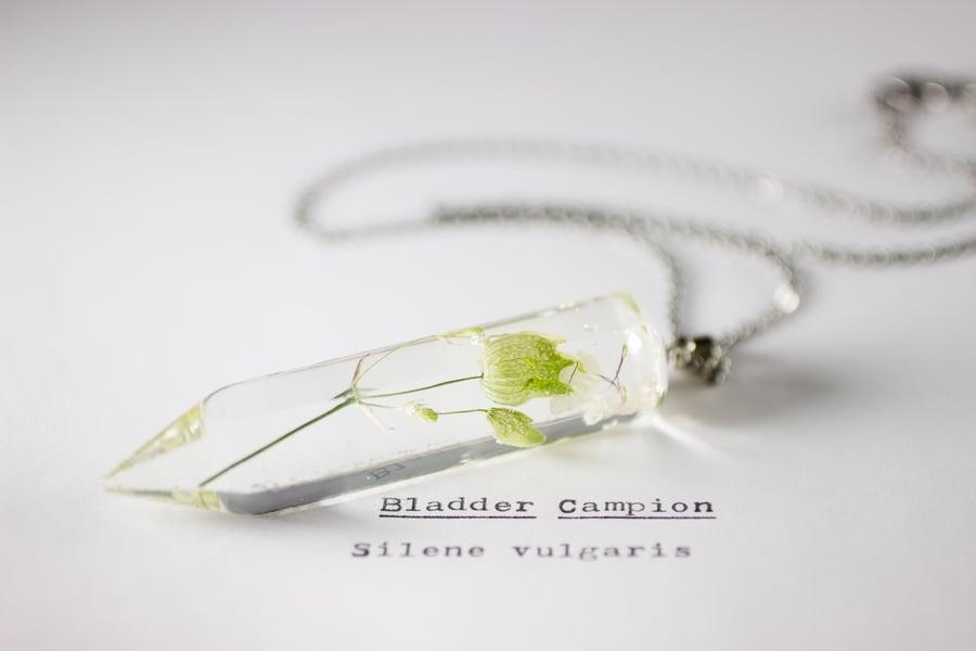 Image of Bladder Campion (Silene vulgaris) - Large Crystalline Pendant #1