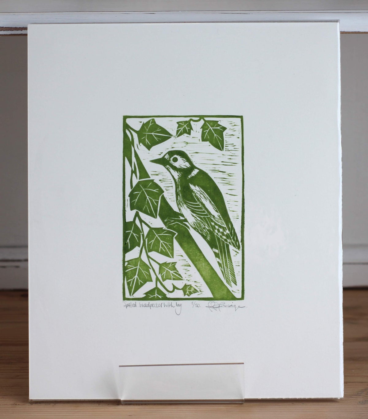 Image of 'Great spotted woodpecker with ivy'
