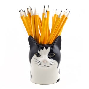 Image of POT CHAT BARNEY, QUAIL