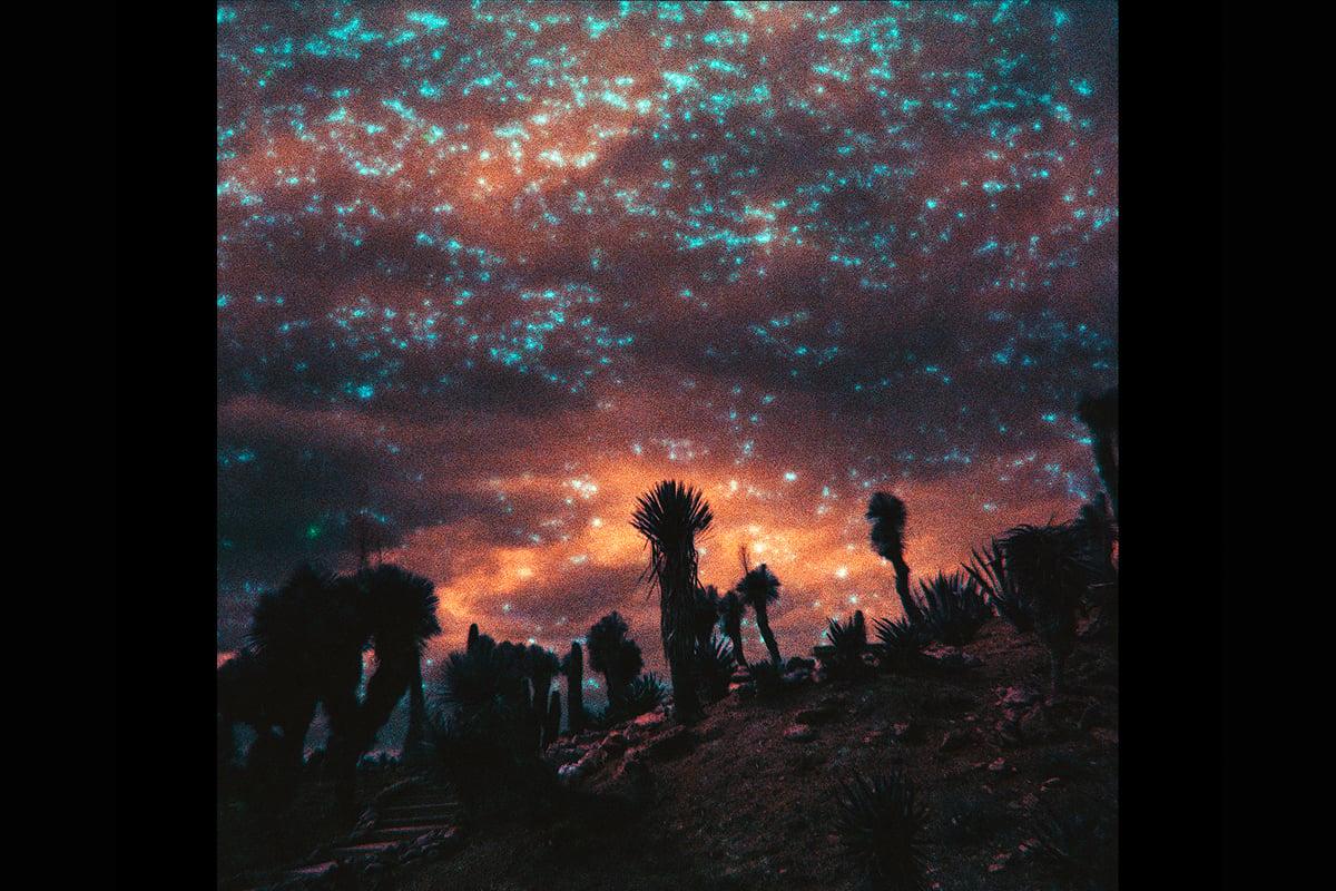 Image of Starry Sky II
