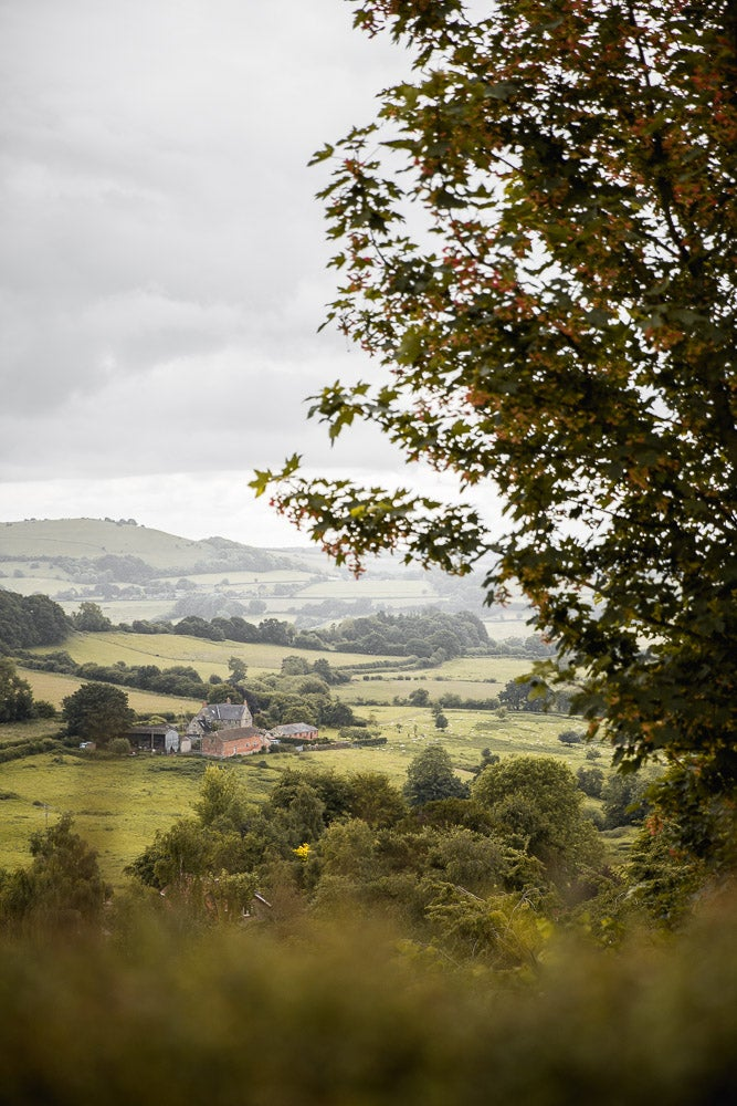 Image of Autumn In The English Countryside 2020
