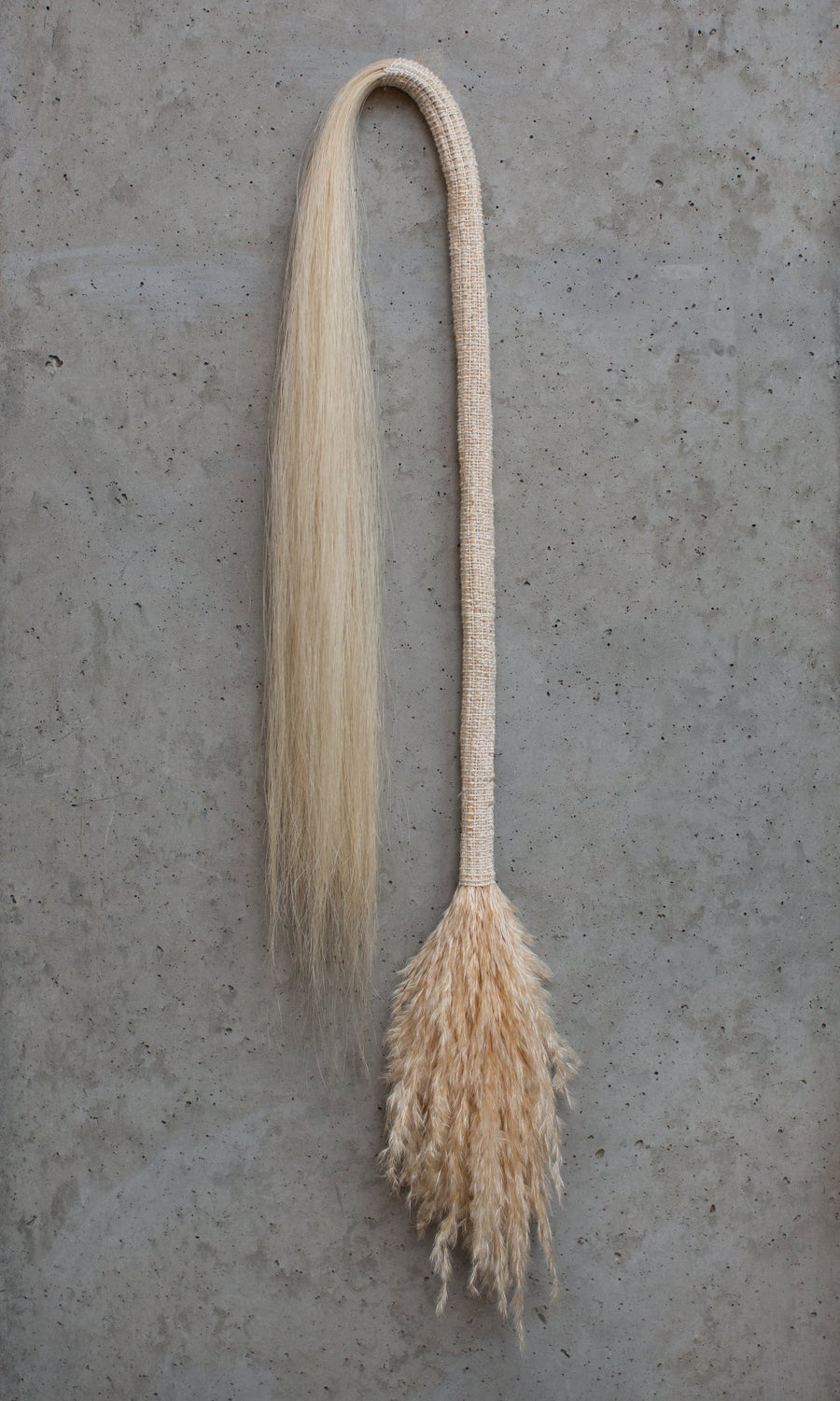 Image of Large Pampas Whip
