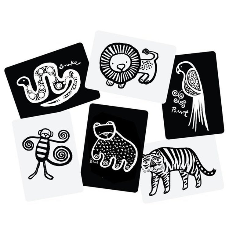 Image of Wee Gallery Jungle Art Cards