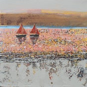 Image of Red Sails at Sunset, Rock, Cornwall