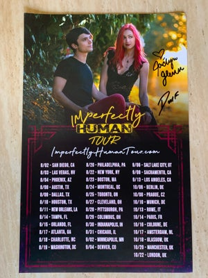 Image of Official Tour Poster (Signed)